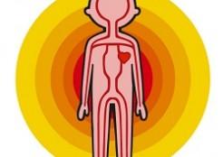 一日たった3粒で血流が良くなる薬のような食べ物とは?