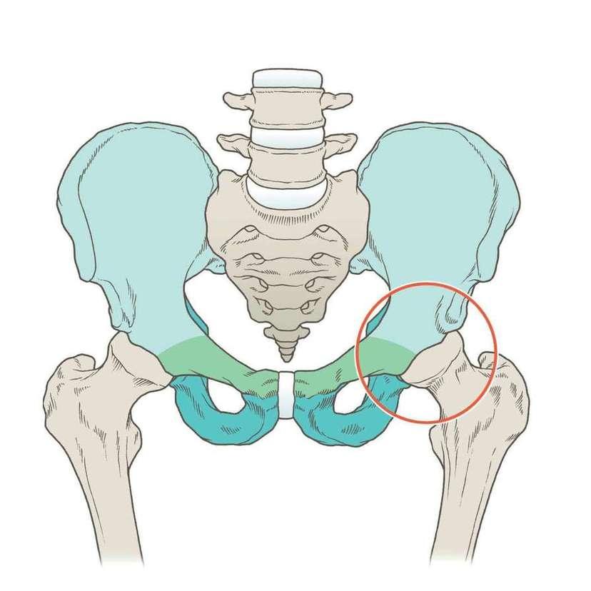 女子特有の股関節のゆがみ。それを改善するストレッチとは?