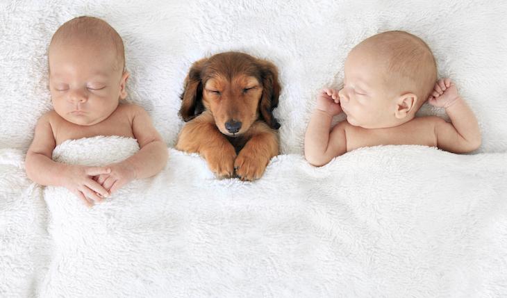 ○○を分泌させると、深くて、質の良い睡眠を手に入れることができる!