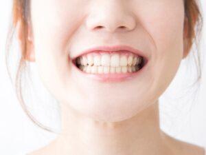 歯からみる!人間にとってバランスのとれた食事とは?